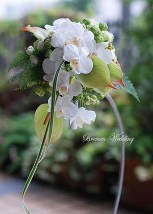 胡蝶蘭のデザインブーケ