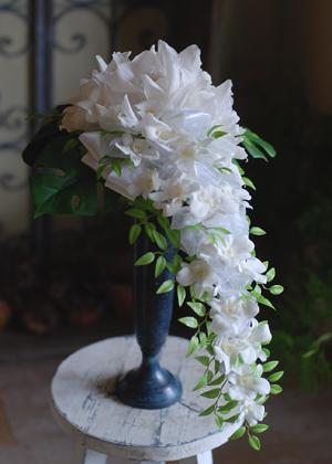 蘭2種のロングキャスケード