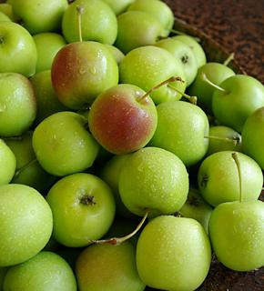 <h2><br/>ブーケやアレンジにフルーツを加えるとキュートな仕上がりになります。夏は青いりんご、秋冬は赤いりんごで演出するのもおしゃれです。</h2>