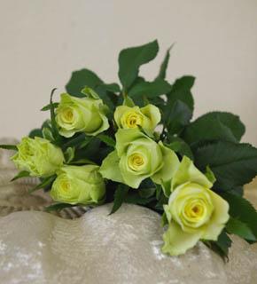 <h2><br/>外側がピスターチェ色、中心がやや黄色の小ぶりのバラ。濃い緑や黄色の同系色でまとめても、コントラストカラーと合わせてもいいでしょう。</h2>